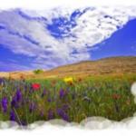 La giornata di un'anima cristiana