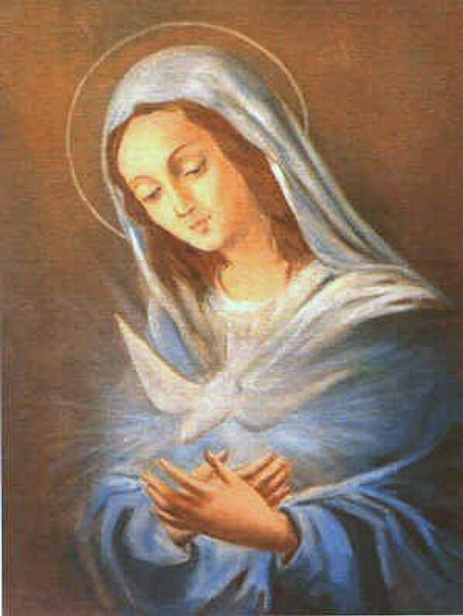Vieni dolce Spirito che santifica ...